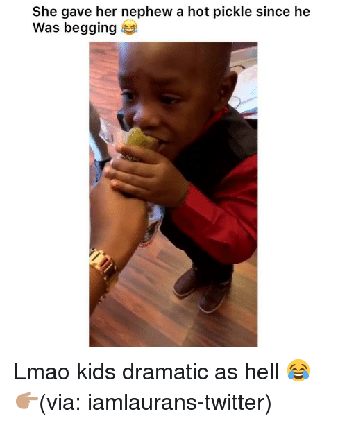 Funny, Lmao, and Twitter: She gave her nephew a hot pickle since he  Was begging Lmao kids dramatic as hell 😂 👉🏽(via: iamlaurans-twitter)