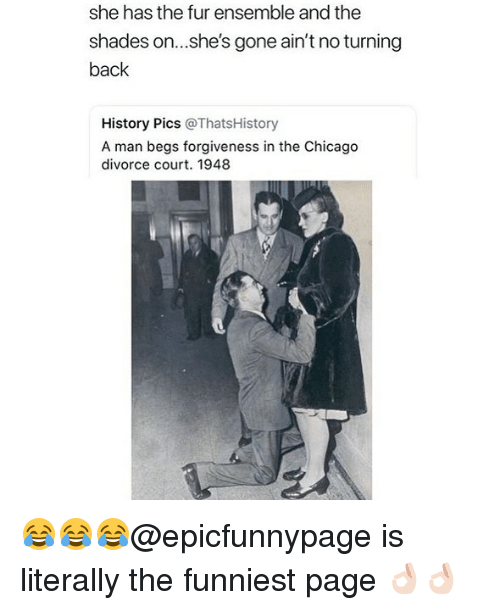 Chicago, Memes, and History: she has the fur ensemble and the  shades on...she's gone ain't no turning  back  History Pics @ThatsHistory  A man begs forgiveness in the Chicago  divorce court. 1948 😂😂😂@epicfunnypage is literally the funniest page 👌🏻👌🏻
