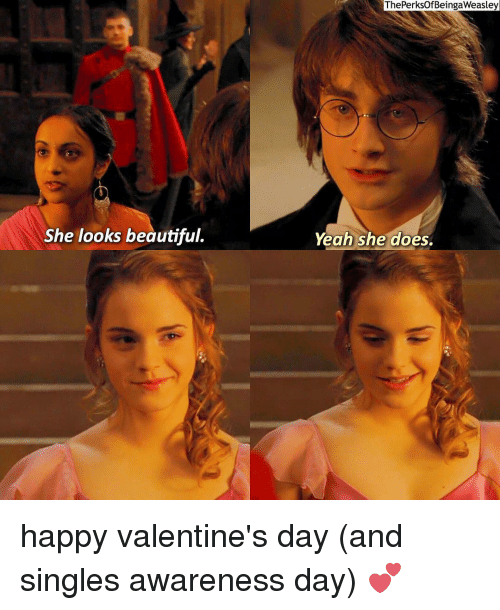 Beautiful, Doe, and Memes: She looks beautiful.  The PerksOfBeingaWeasley  Yeah she does. happy valentine's day (and singles awareness day) 💕