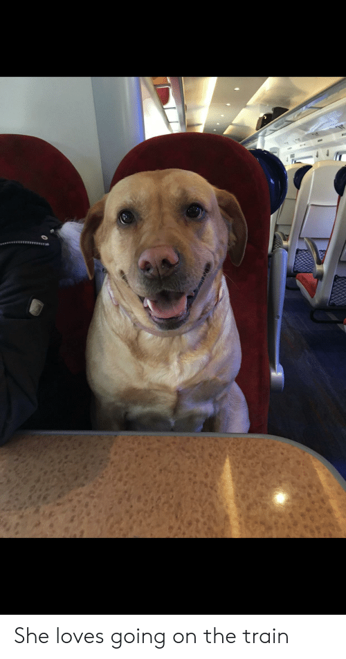 Train, She, and The Train: She loves going on the train