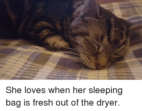Fresh, Sleeping, and Her: She loves when her sleeping bag is fresh out of the dryer.