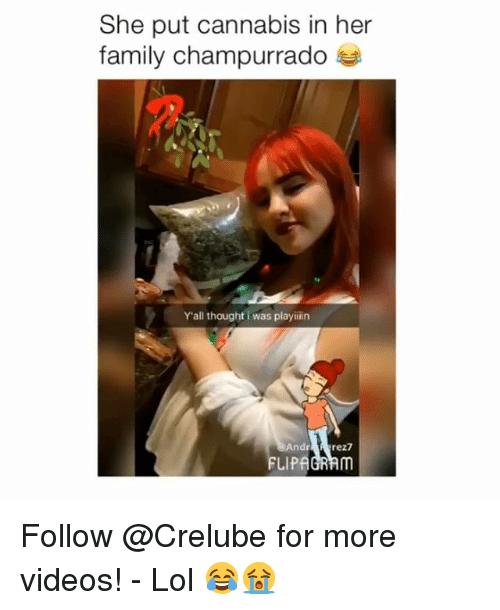 Family, Lol, and Memes: She put cannabis in her  family champurrado  Y'all thought i was playiiin  Andr  FLIPAGRAm Follow @Crelube for more videos! - Lol 😂😭