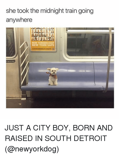 Detroit, Funny, and New York: she took the midnight train going  anvwhere  NEW YORKERS KEEP  NEW YORK SAFE JUST A CITY BOY, BORN AND RAISED IN SOUTH DETROIT (@newyorkdog)