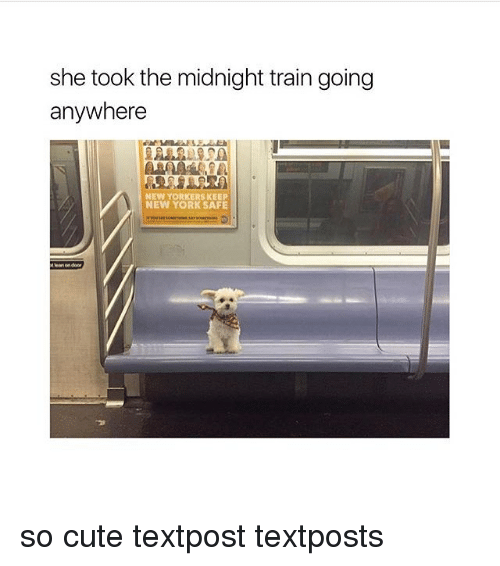 Cute, Lean, and New York: she took the midnight train going  anywhere  NEW YORKERS KEEP  NEW YORK SAFE  t lean on door  '긴 so cute textpost textposts
