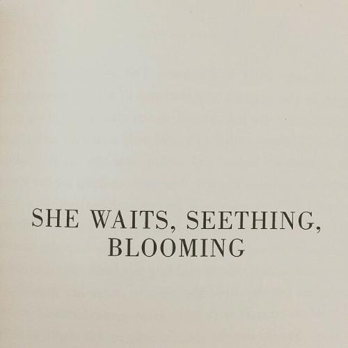 She, Seething, and Blooming: SHE WAITS, SEETHING,  BLOOMING