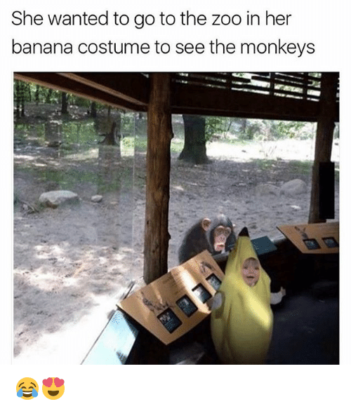 She Wanted To Go To The Zoo In Her Banana Costume To See The Monkeys