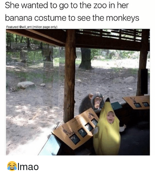 Memes, Banana, and 🤖: She wanted to go to the zoo in her  banana costume to see the monkeys  Featured @will ent (million page only) 😂lmao