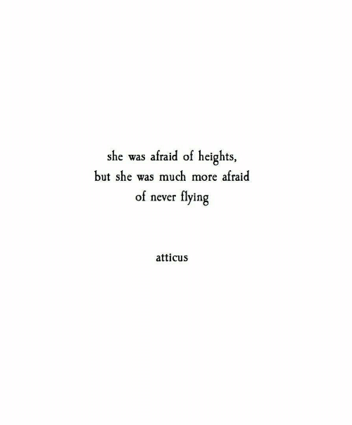 Never, She, and Atticus: she was afraid of heights,  but she was much more afraid  of never flying  atticus