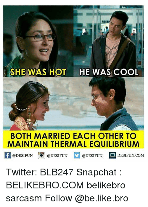 she was hot he was cool both married each other 13616620 ✅ 25 best memes about equilibrium equilibrium memes,Equilibrium Memes