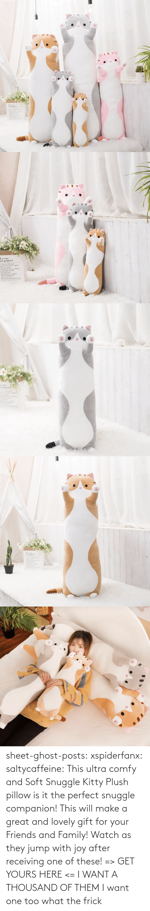 Family, Frick, and Friends: sheet-ghost-posts: xspiderfanx:  saltycaffeine:  This ultra comfy and Soft Snuggle Kitty Plush pillow is it the perfect snuggle companion! This will make a great and lovely gift for your Friends and Family! Watch as they jump with joy after receiving one of these! => GET YOURS HERE <=    I WANT A THOUSAND OF THEM  I want one too what the frick