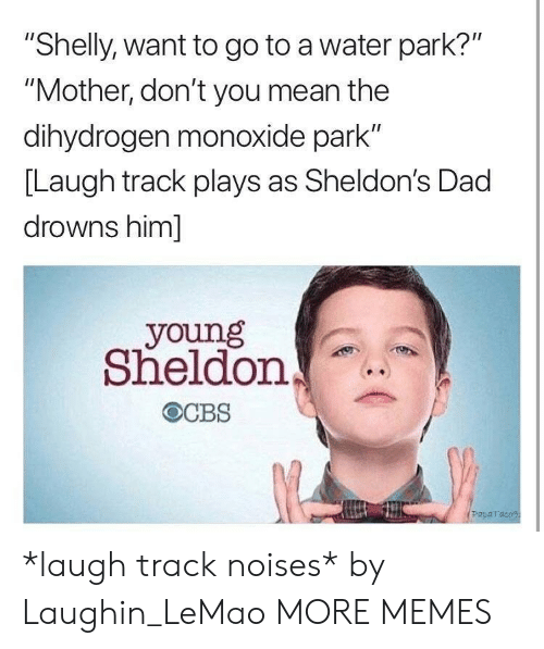 """Dad, Dank, and Memes: """"Shelly, want to go to a water park?""""  """"Mother, don't you mean the  dihydrogen monoxide park""""  [Laugh track plays as Sheldon's Dad  drowns him]  young  Sheldon  Paparaco *laugh track noises* by Laughin_LeMao MORE MEMES"""