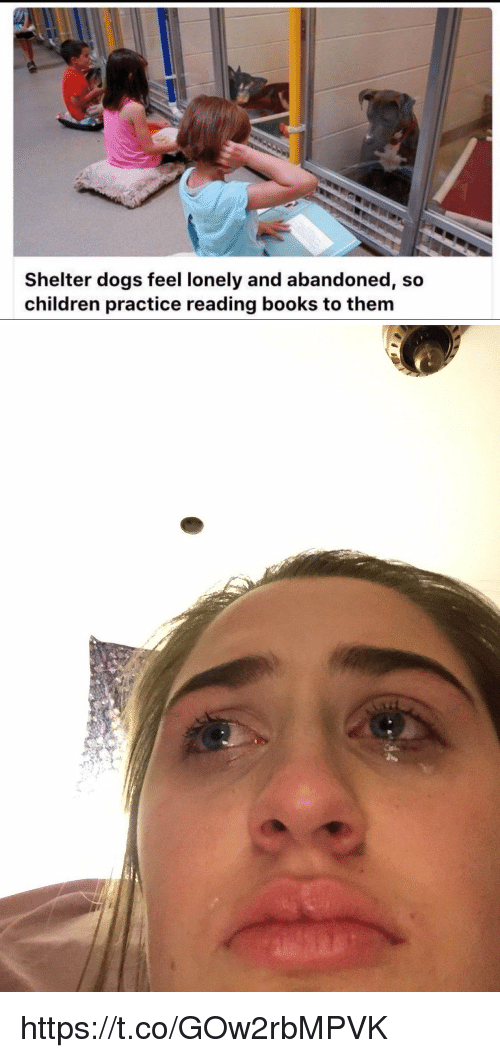 Funny, Feeling Lonely, and Abandoned: Shelter dogs feel lonely and abandoned, so  children practice reading books to them https://t.co/GOw2rbMPVK