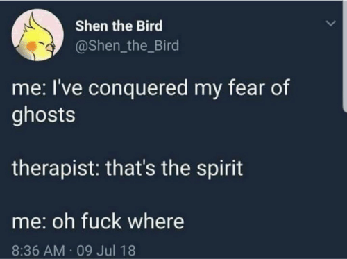 Fuck, Spirit, and Fear: Shen the Bird  @Shen_the_Bird  me: I've conquered my fear of  ghosts  therapist: that's the spirit  me: oh fuck where  8:36 AM 09 Jul 18