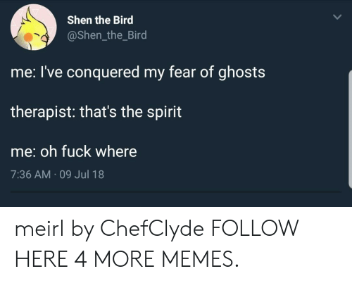 Dank, Memes, and Target: Shen the Bird  @Shen_the_Bird  me: l've conquered my fear of ghosts  therapist: that's the spirit  me: oh fuck where  7:36 AM 09 Jul 18 meirl by ChefClyde FOLLOW HERE 4 MORE MEMES.