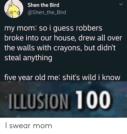 Guess, House, and Wild: Shen the Bird  @Shen_the Bird  my mom: so i guess robbers  broke into our house, drew all over  the walls with crayons, but didn't  steal anything  five year old me: shit's wild i know  ILLUSION 100 I swear mom