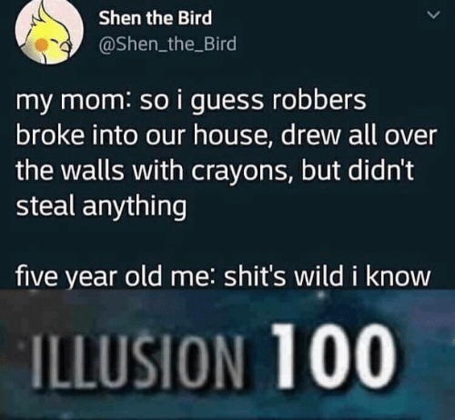 Guess, House, and Wild: Shen the Bird  @Shen_the Bird  my mom: so i guess robbers  broke into our house, drew all over  the walls with crayons, but didn't  steal anything  five year old me: shit's wild i know  ILLUSION 100