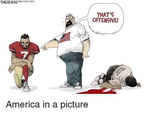 America, Pictures, and Content: SHENEMAN  TRIBUNE CONTENT AGENCY  THAT'S  OFFENSIVE! America in a picture
