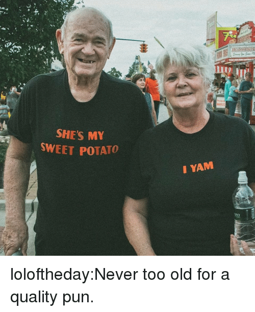 Tumblr, Blog, and Potato: SHE'S M  SWEET POTATO  I YAM  ona loloftheday:Never too old for a quality pun.