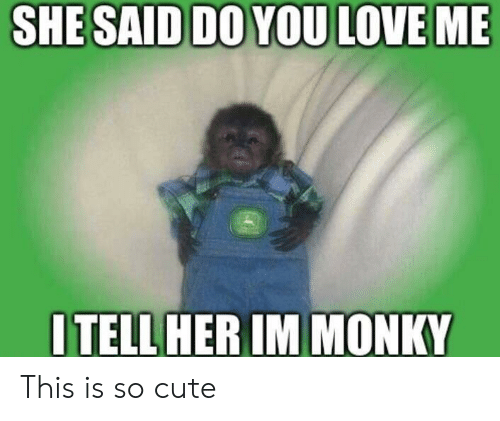 Cute, Love, and You: SHESAID DO YOU LOVE ME  ITELLHER IM MONKY This is so cute