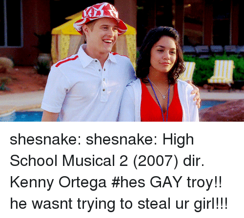 High School Musical, School, and Target: shesnake: shesnake: High School Musical 2 (2007) dir. Kenny Ortega   #hes GAY troy!! he wasnt trying to steal ur girl!!!