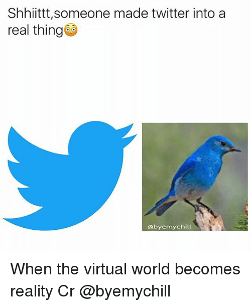 Chill, Memes, and Twitter: Shhiittt, someone made twitter into a  real thing  obyemy chill When the virtual world becomes reality Cr @byemychill