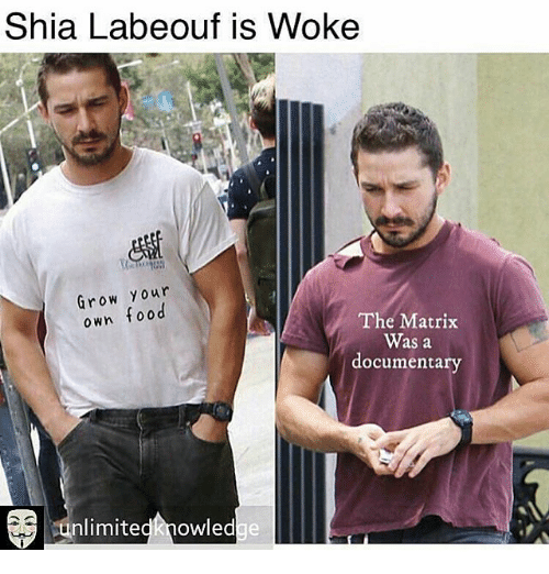 Adults Dating Are We Gonna Do It Meme Shia Labeouf