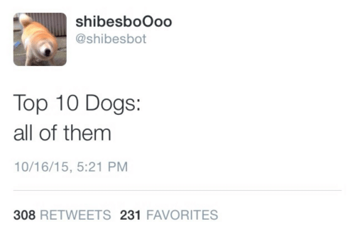 Dogs, Top, and All: shibesboOoo  @shibesbot  Top 10 Dogs:  all of themm  10/16/15, 5:21 PM  308 RETWEETS 231 FAVORITES