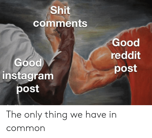 Shit Comments Good Reddit Post Good Instagram Post the Only