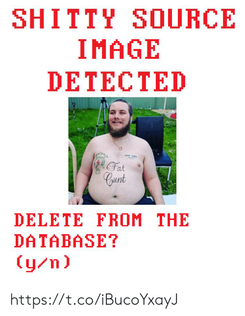 Cunt, Image, and Fat: SHITTY SOURCE  IMAGE  DETECTED  Fat  Cunt  DELETE FROM THE  DATABASE?  (y/n) https://t.co/iBucoYxayJ