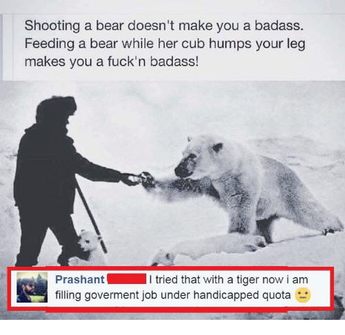 Memes, Bear, and Bears: Shooting a bear doesn't make you a badass.  Feeding a bear while her cub humps your leg  makes you a fuck'n badass!  Prashant  l tried that with a tiger now i am  filling goverment job under handicapped quota