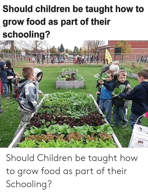 Children, Food, and How To: Should children be taught how to  grow food as part of their  schooling?  GES Should Children be taught how to grow food as part of their Schooling?