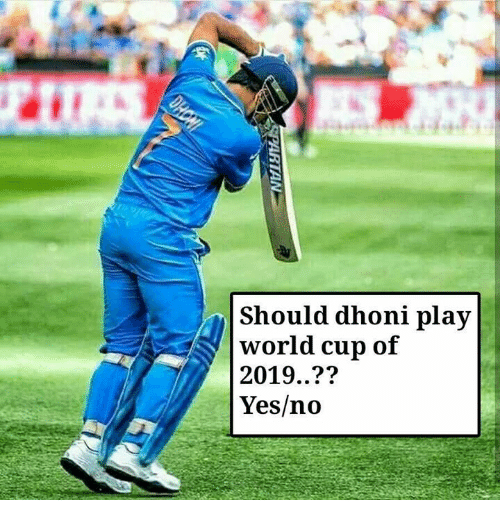 Memes, World Cup, and World: Should dhoni play  world cup of  2019..??  Yes/no