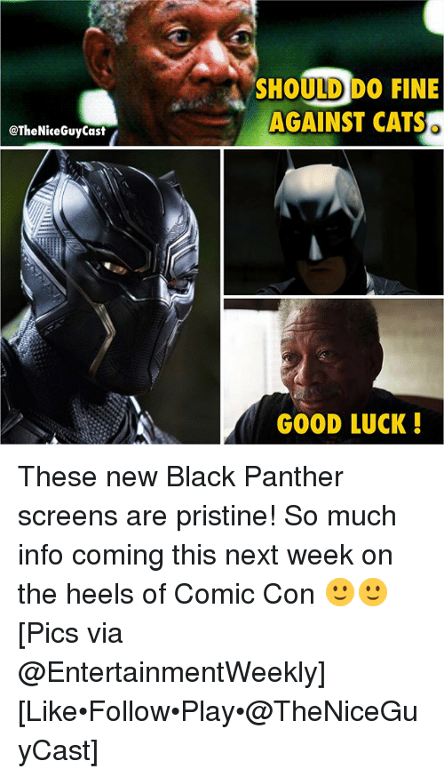 Cats, Memes, and Black: SHOULD DO FINE  AGAINST CATS  @TheNiceGuyCast  GOOD LUCK! These new Black Panther screens are pristine! So much info coming this next week on the heels of Comic Con 🙂🙂 [Pics via @EntertainmentWeekly] [Like•Follow•Play•@TheNiceGuyCast]