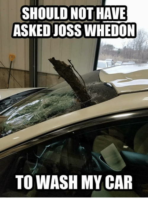 Memes, 🤖, and Car: SHOULD NOT HAVE  ASKED JOSS WHEDON  TO WASH MY CAR