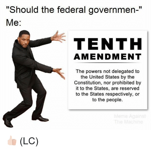 """Memes, Constitution, and United: """"Should the federal governmen-""""  Me:  TENTH  AMENDMENT  The powers not delegated to  the United States by the  Constitution, nor prohibited by  it to the States, are reserved  to the States respectively, or  to the people. 👍🏻 (LC)"""