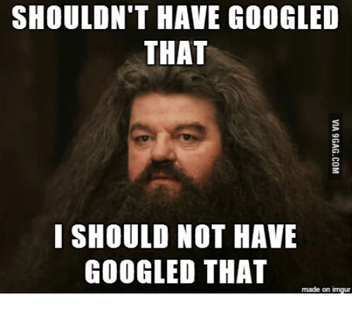 shouldnt have googled that i should not have googled that 14289119 ✅ 25 best memes about hagrid i should not have said that