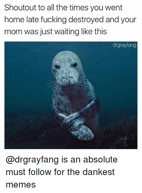 Fucking, Memes, and Home: Shoutout to all the times you went  home late fucking destroyed and your  mom was just waiting like this  drgrayfang @drgrayfang is an absolute must follow for the dankest memes
