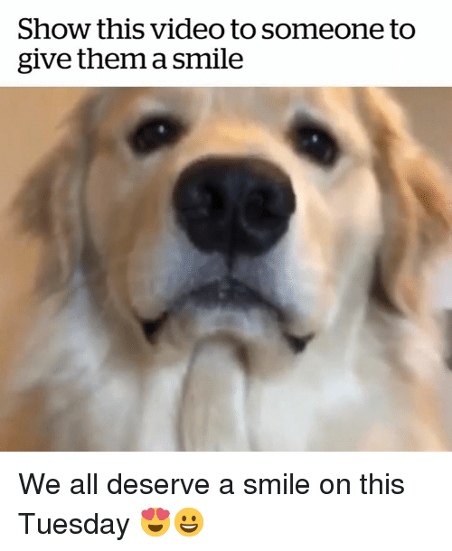 Show This Video To Someone Too Give Them A Smile We All Deserve A