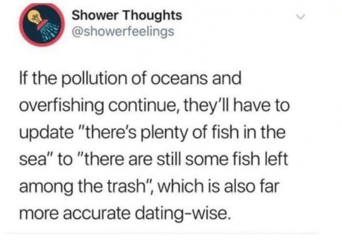dating wise