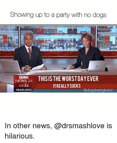 Dogs, Memes, and News: Showing up to a party with no dogs  NEWS24 THISIS THE WORSTDAYEVER  11:32  HEADLINES  IT REALLY SUCKS  @dogsbeingbasic In other news, @drsmashlove is hilarious.