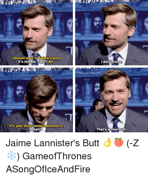shown a pic of jaimes butt its female right no 8042937 ✅ 25 best memes about jaime lannister butt jaime lannister butt