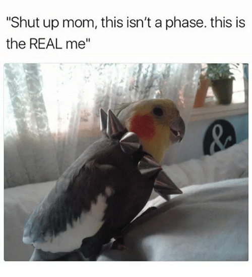 """Shut Up, The Real, and Mom: """"Shut up mom, this isn't a phase. this is  the REAL me""""  IS IS"""
