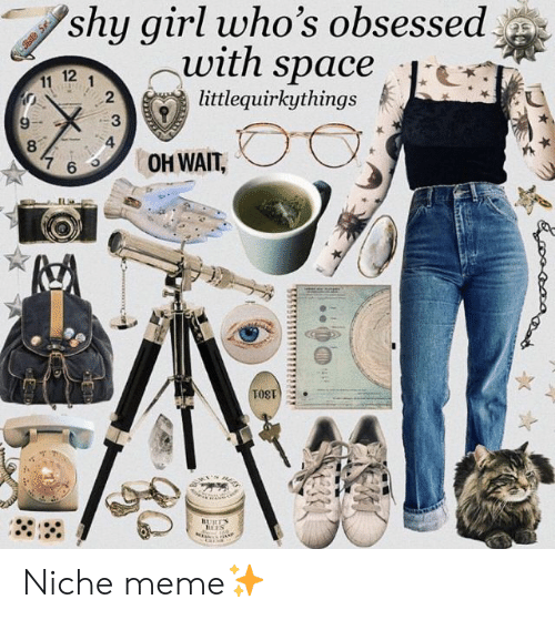 Meme, Girl, and Space: shy girl who's obsessed  -With space  12  .  littlequirkythings  2  6OH WAIT, Niche meme✨
