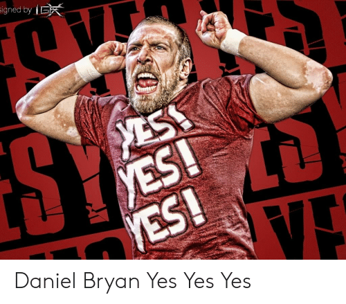 Signed By E Yes Yes Ve Daniel Bryan Yes Yes Yes Daniel Bryan