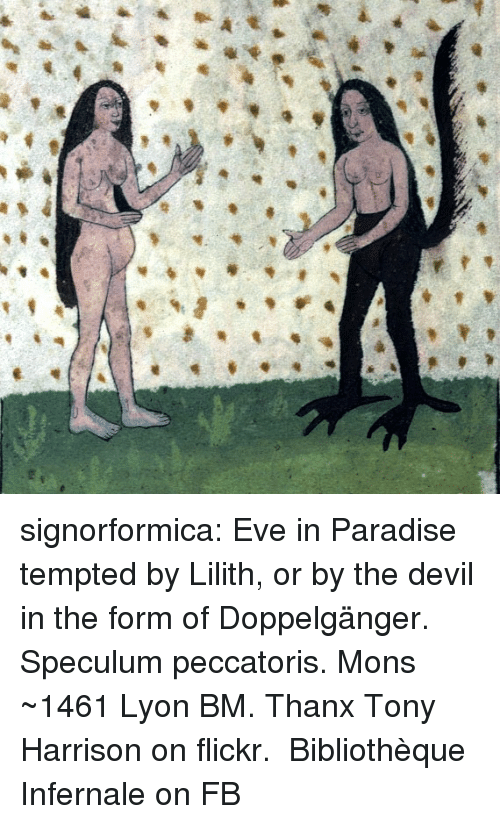 Doppelganger, Facebook, and Paradise: signorformica:   Eve in Paradise tempted by Lilith, or by the devil in the form of Doppelgänger. Speculum peccatoris. Mons ~1461 Lyon BM. Thanx Tony Harrison on flickr.   Bibliothèque Infernale on FB