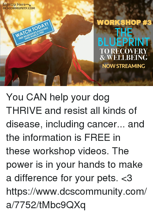Signup here dcscommunitycom workshop 3 free workshops available memes videos and cancer signup here dcscommunity workshop 3 free malvernweather Image collections