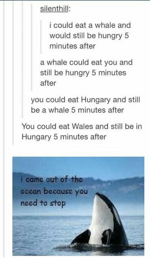silent hill i could eat a whale and would still 13294354 ✅ 25 best memes about i came out of the ocean because you need