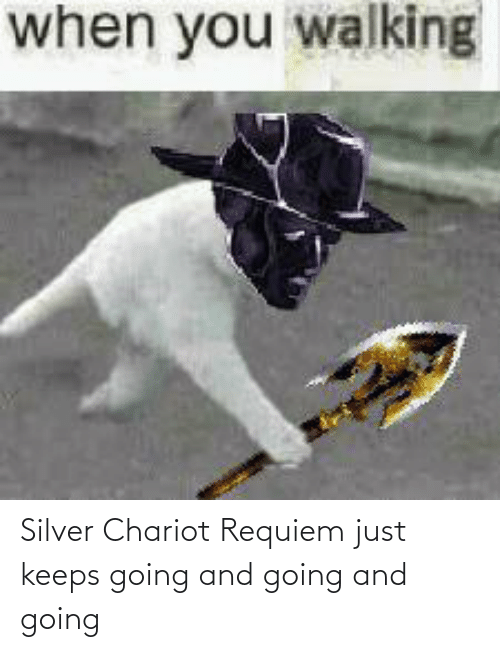 Silver, Requiem, and Just: Silver Chariot Requiem just keeps going and going and going