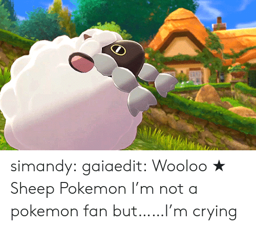 Crying, Pokemon, and Tumblr: simandy:  gaiaedit:  Wooloo ★ Sheep Pokemon  I'm not a pokemon fan but……I'm crying