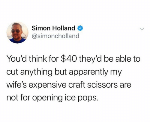 Apparently, Dank, and 🤖: Simon Holland  @simoncholland  You'd think for $40 they'd be able to  cut anything but apparently my  wife's expensive craft scissors are  not for opening ice pops.